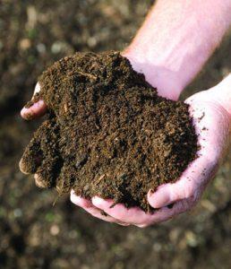 Il suolo è deupaperato di tutti i minerali utili all'uomo