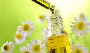 Gli oli essenziali aiutano a purificare l'aria nelle nostre case