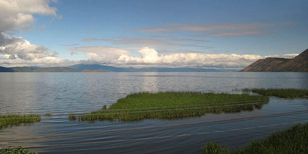 L'alga Klamath nasce nell'omonimo lago